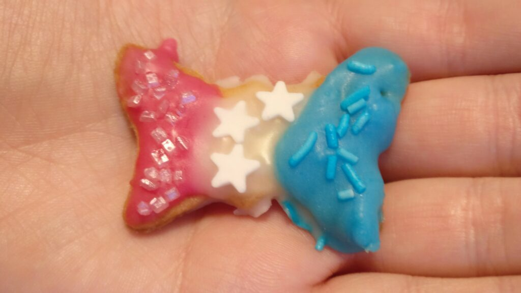 Eine Hand hält ein selbst gebackenes Weihnachtsplätzchen in Form eines Schmetterlings. Es trägt von links nach rechts drei farbige Streifen pink, weiß und blau - die Farben der Trans Pride-Flagge.